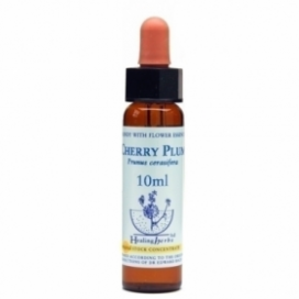 Bach Cherry Plum - Cerasifera 10 Ml. Healing Herbs