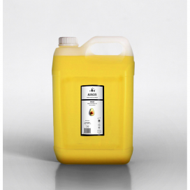 Aguacate aceite vegetal virgen 5 litros Evo - Terpenic