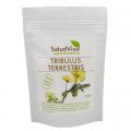 Tribulus Terrestris en polvo. 250 grs. Salud Viva