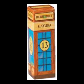 Herbodiet extracto gayuba 50 ml. Novadiet